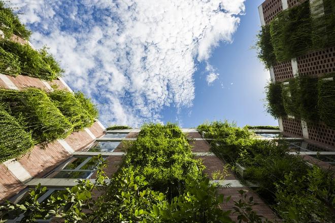 Khách sạn 5 tầng xanh mướt ở Hội An nổi bật trên báo ngoại - Ảnh 1.