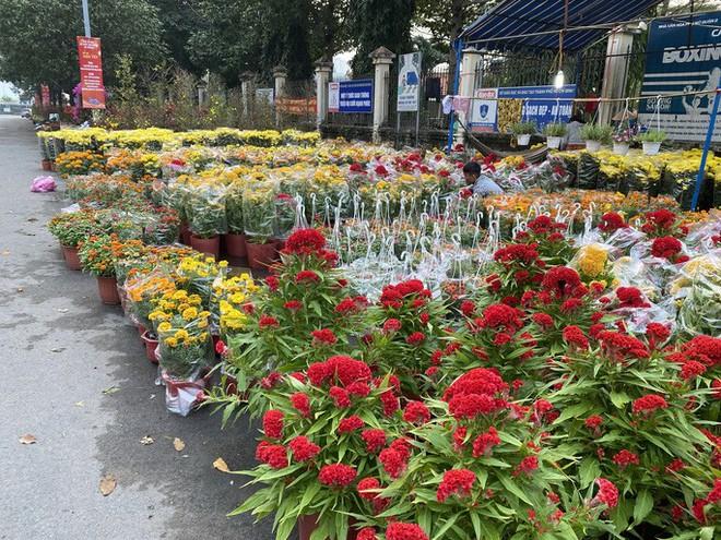 28 Tết, người bán hoa Tết ở TP HCM muốn khóc sau trận mưa bất ngờ - Ảnh 1.