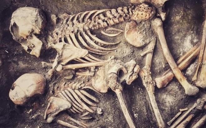 Bí mật bên trong 70.000 bộ xương cổ đại: Con người tiến hóa vượt trội, bắt dịch bệnh phải 'đình chiến'
