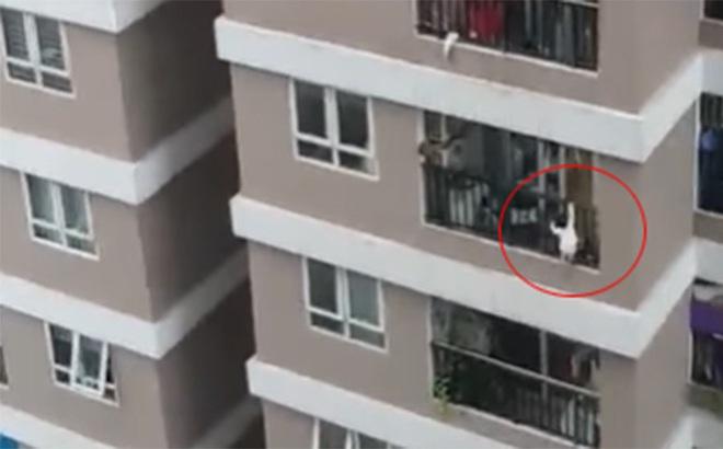 Sự thực sức nặng em bé 3 tuổi rơi từ tầng 12 xuống là bao nhiêu?