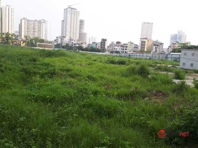 Hà Nội: Những dự án om đất vàng, để cỏ mọc um tùm sau những tấm tôn quây kín - Ảnh 5.