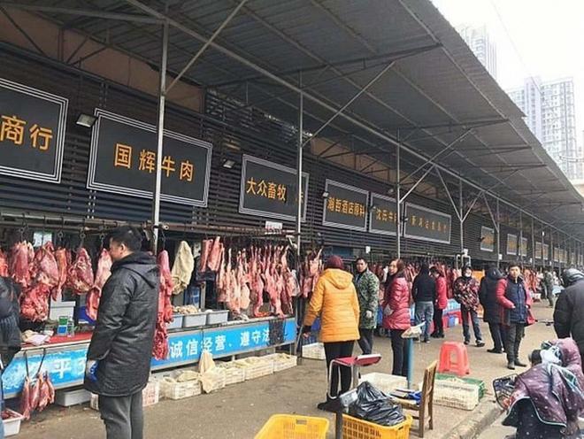 WHO: Trang trại động vật hoang dã ở Trung Quốc có thể là nguồn gốc gây đại dịch Covid-19 - Ảnh 1.