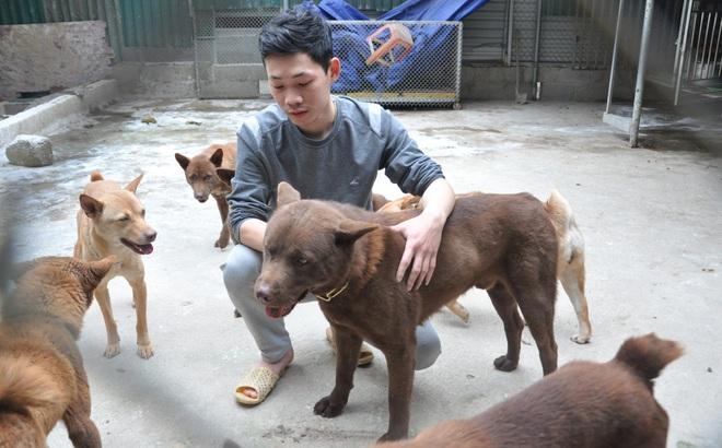 """CLIP: Cận cảnh chú chó được ví như """"thần may mắn"""" của người Mông huyện biên giới, trị giá 200 triệu đồng"""