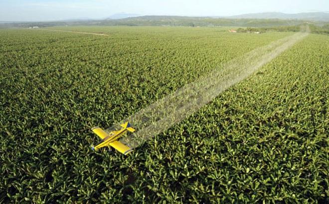 Quan chức Brazil hứng 'bão' chỉ trích vì đề xuất điều máy bay phun dung dịch rửa tay