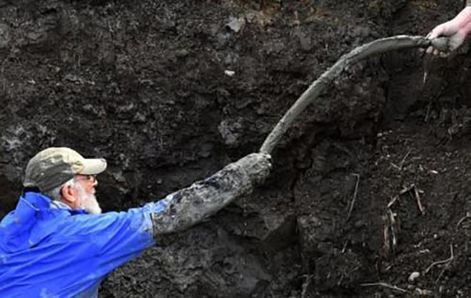 Đào đất để đặt đường ống dẫn khí, lão nông tìm thấy khúc xương kì lạ, càng đào lại càng bất ngờ 002
