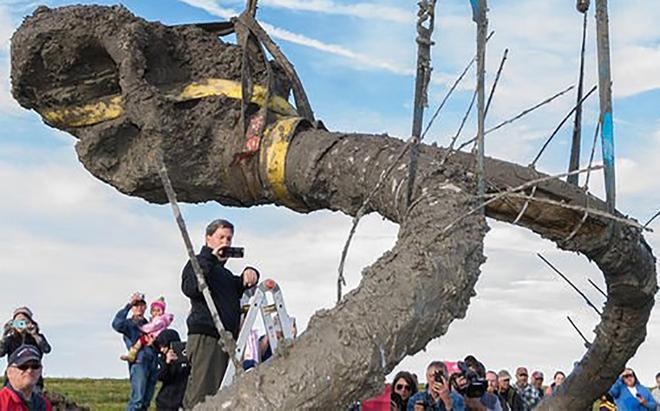 Đào đất để đặt đường ống dẫn khí, lão nông tìm thấy khúc xương kì lạ, càng đào lại càng bất ngờ 004