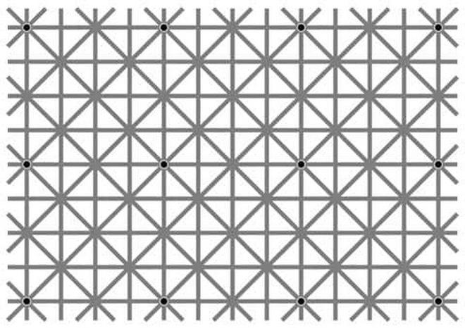 Thách thức thị giác 10 giây: Bạn nhìn thấy bao nhiêu chấm đen trong ảnh? - Ảnh 2.