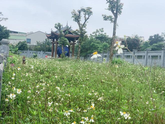 Công trình Văn Miếu gần 80 tỉ ở Hà Tĩnh xây xong không có đường vào - Ảnh 9.