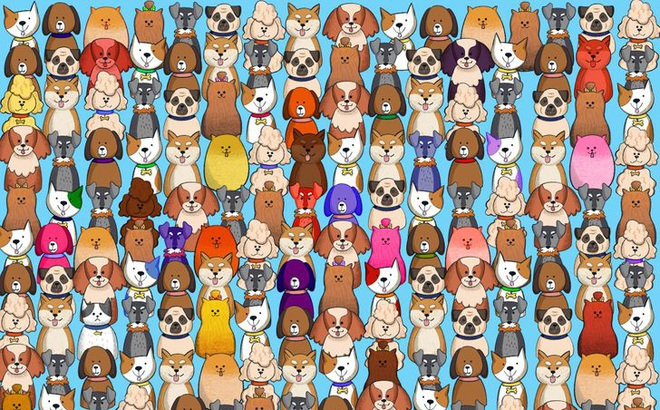 Thách thức thị giác 10 giây: Bạn có đủ tinh mắt để tìm ra chú mèo nấp trong đàn chó?