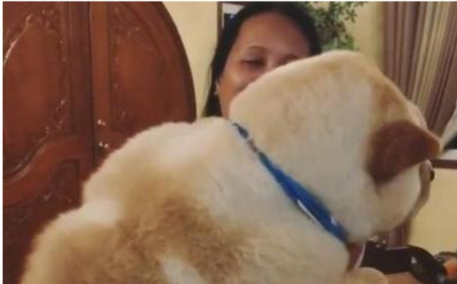 Gửi mẹ trông hộ chó cưng vài phút, cảnh tượng nhìn thấy khi trở lại khiến chủ nhân phát hiện ra 1 sự thật không hề hay biết bấy lâu