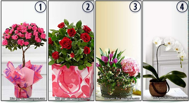 Thông điệp tình yêu nào mà chàng muốn trao bạn qua bó hoa tặng nhân ngày 8/3? - Ảnh 1.