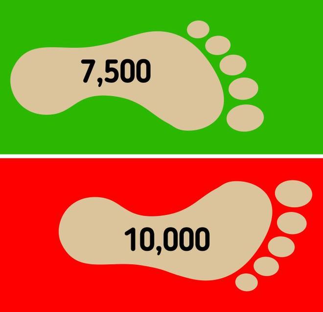TS ĐH Y Harvard: Không cần phải đi bộ 10.000 bước, cách đi ít hơn nhiều vẫn rất tốt để tăng tuổi thọ - Ảnh 1.