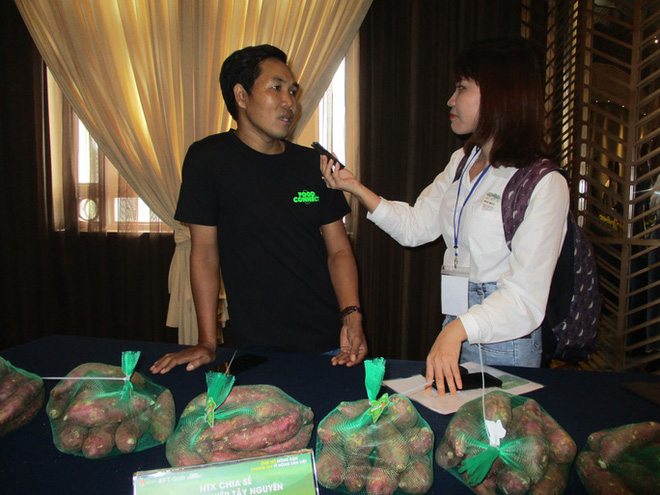 Trồng khoai lang Nhật lãi cả trăm triệu đồng/ha - Ảnh 1.