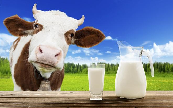 Sữa tái chế: Có phải sữa giả, hoàn nguyên là thế nào, giá trị dinh dưỡng ra sao? - Ảnh 2.