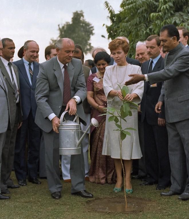 Bức ảnh biết nói về ông Gorbachev: Từ con trai nhà thuần nông đến Tổng thống Liên Xô - Ảnh 4.
