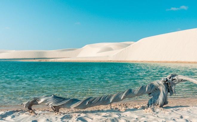 """Sa mạc """"ảo diệu"""" nhất thế giới: Gọi là sa mạc nhưng thực ra đầy… nước!"""