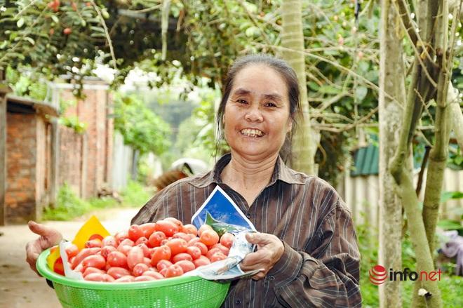 Trồng loại quả vừa chua vừa chát, người Hà Nội vẫn thu về trăm triệu đồng - Ảnh 1.