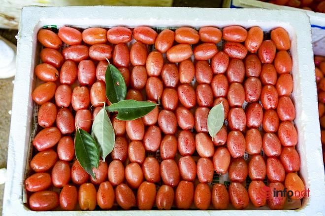Trồng loại quả vừa chua vừa chát, người Hà Nội vẫn thu về trăm triệu đồng - Ảnh 5.