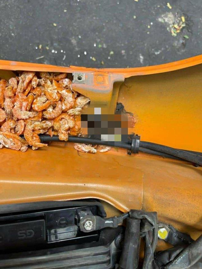 Mang xe đi sửa, cô gái choáng váng khi phát hiện đồ bên trong, nhiều người thấy nổi da gà - Ảnh 4.