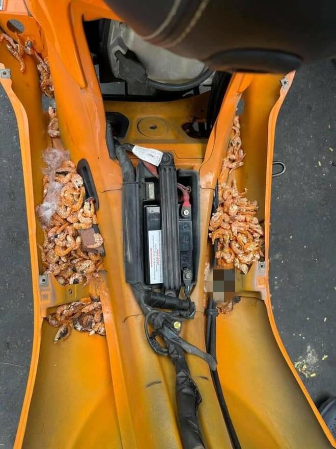 Mang xe đi sửa, cô gái choáng váng khi phát hiện đồ bên trong, nhiều người thấy nổi da gà - Ảnh 5.