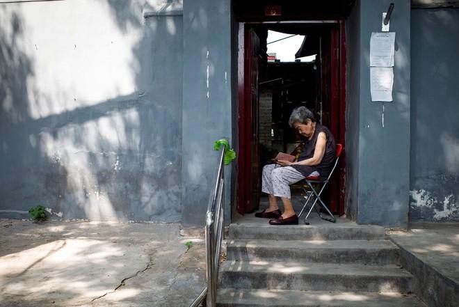 Vấn nạn người già bị lừa đảo ở Trung Quốc, xót xa câu nói: Nhảy  sông tử tự là xong! - Ảnh 1.