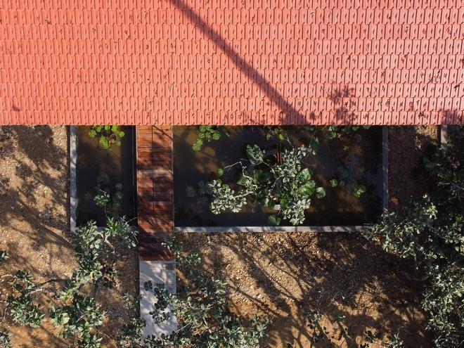 Huế: Ngôi nhà gỗ nằm trọn trong khu vườn ngập tràn hoa bưởi đẹp lạ trên báo Mỹ - Ảnh 8.