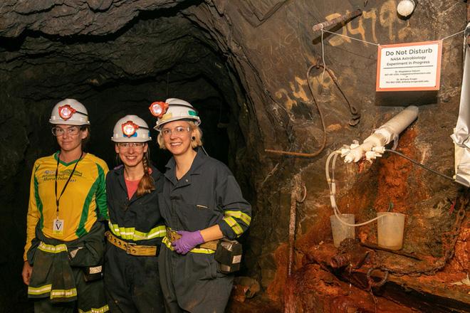 Sinh vật như ngoài hành tinh sống khỏe trong mỏ vàng 1,5 km dưới lòng đất - Ảnh 1.