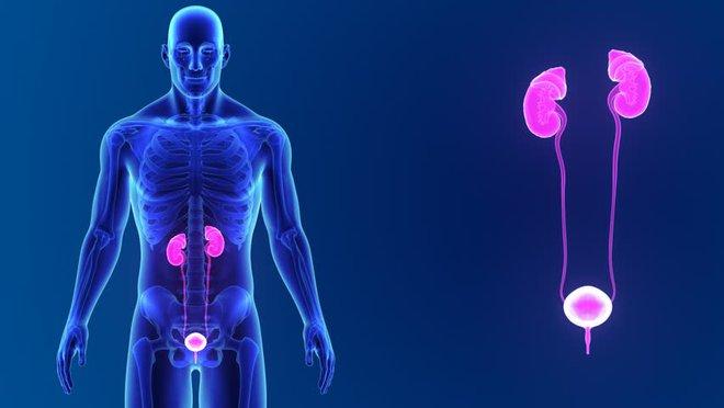 Dấu hiệu nhận biết 5 cơ quan nội tạng bị bẩn: Hãy thử đối chiếu xem cơ thể bạn có sạch không? - Ảnh 4.