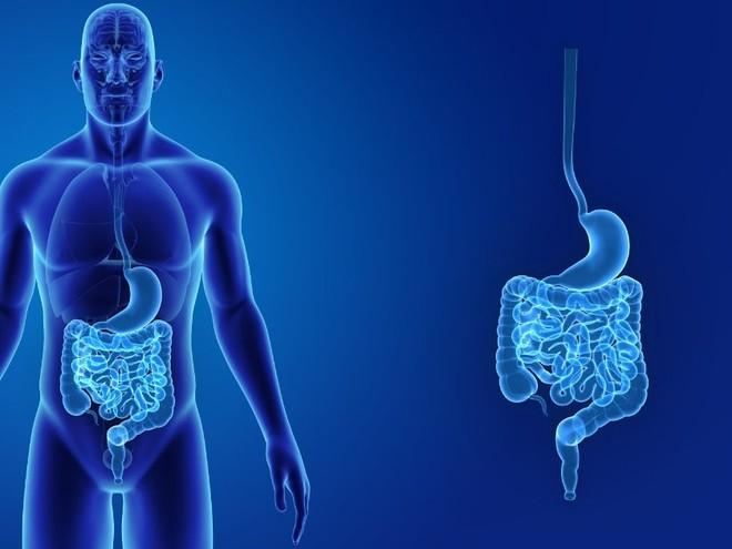 Dấu hiệu nhận biết 5 cơ quan nội tạng bị bẩn: Hãy thử đối chiếu xem cơ thể bạn có sạch không? - Ảnh 3.