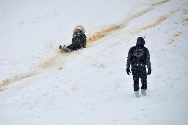 Hài hước cảnh lạc đà ngơ ngác khi thấy tuyết rơi ở Ả Rập Saudi - Ảnh 3.