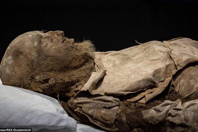 Bí ẩn bào thai giấu giữa 2 chân xác ướp vị giám mục ở thế kỷ 17 - Ảnh 1.