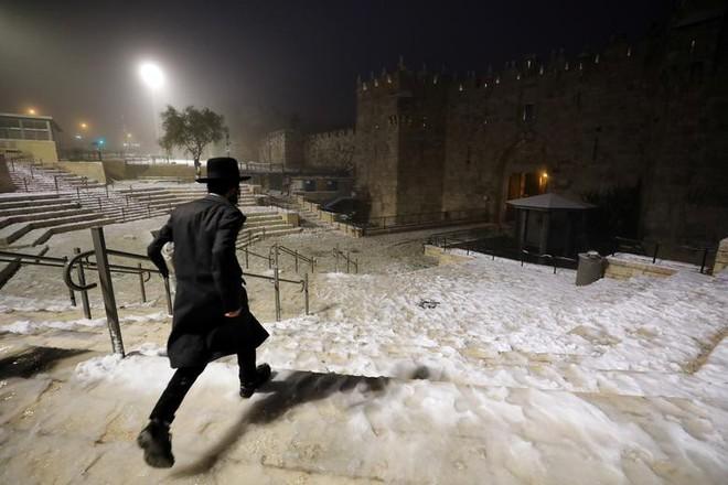 Hài hước cảnh lạc đà ngơ ngác khi thấy tuyết rơi ở Ả Rập Saudi - Ảnh 6.
