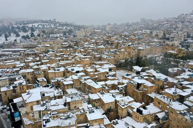 Hài hước cảnh lạc đà ngơ ngác khi thấy tuyết rơi ở Ả Rập Saudi - Ảnh 7.