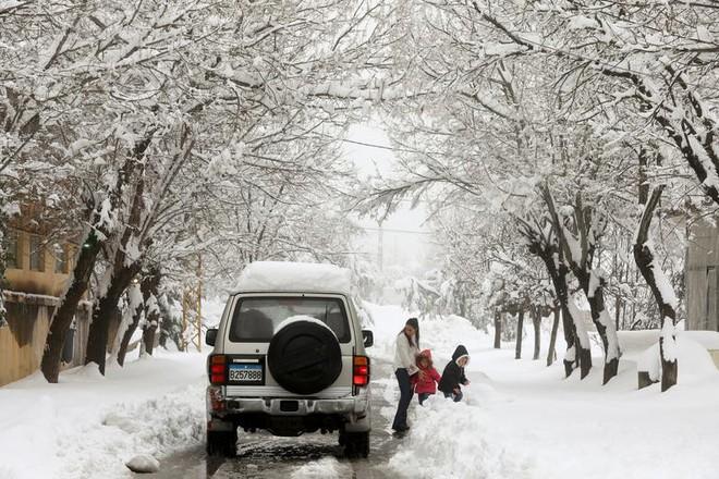 Hài hước cảnh lạc đà ngơ ngác khi thấy tuyết rơi ở Ả Rập Saudi - Ảnh 9.