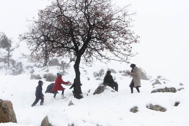 Hài hước cảnh lạc đà ngơ ngác khi thấy tuyết rơi ở Ả Rập Saudi - Ảnh 10.