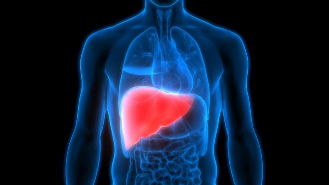 Thải độc gan hay 'đầu độc' gan? Sự thật bất ngờ về thải độc gan bạn cần nắm rõ