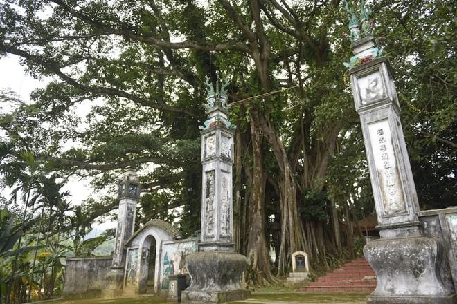 Chiêm ngưỡng báu vật xanh bên đền cổ thờ Tản Viên Sơn Thánh - Ảnh 1.