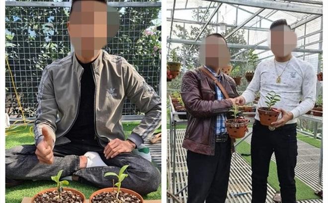 Thấy hoa nở ra màu tím không phải trắng ngọc, người đàn ông tố bị lừa gần 10 tỉ mua lan đột biến giả