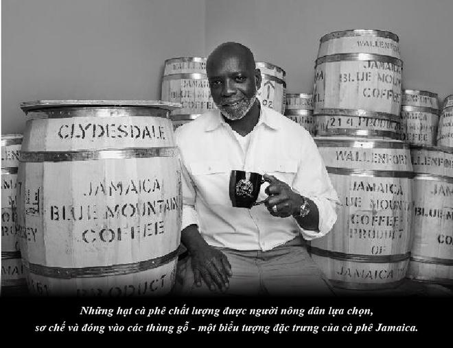 Jamaica – sự quyến rũ của vùng nguyên liệu cà phê nơi cao nhất thế giới - Ảnh 4.