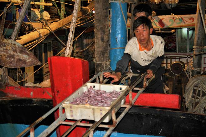 Ngư dân Nghệ An thu hàng trăm triệu mỗi chuyến từ mực luộc tươi trên tàu - Ảnh 2.