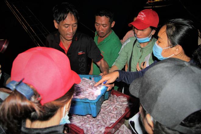 Ngư dân Nghệ An thu hàng trăm triệu mỗi chuyến từ mực luộc tươi trên tàu - Ảnh 3.