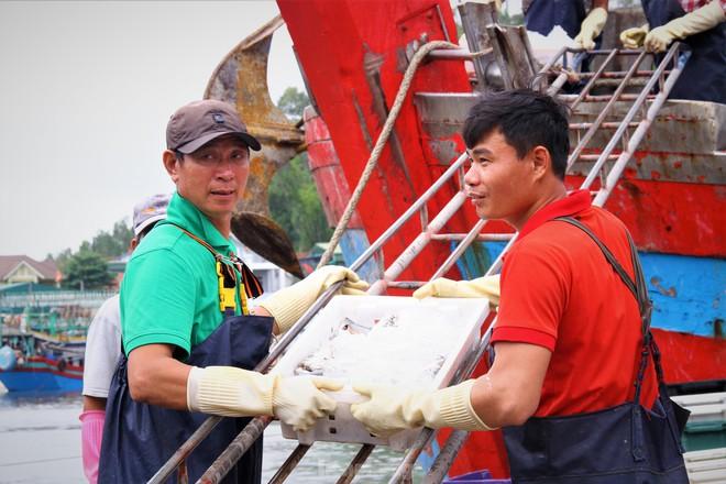 Ngư dân Nghệ An thu hàng trăm triệu mỗi chuyến từ mực luộc tươi trên tàu - Ảnh 15.