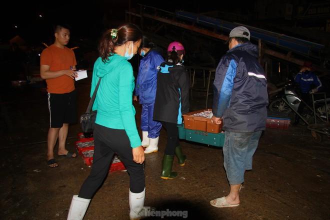Ngư dân Nghệ An thu hàng trăm triệu mỗi chuyến từ mực luộc tươi trên tàu - Ảnh 4.