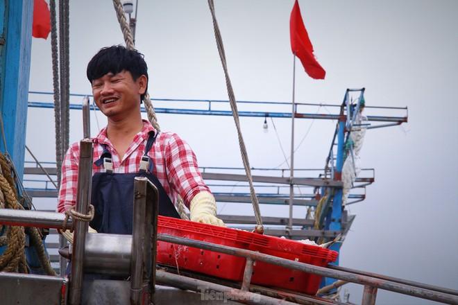 Ngư dân Nghệ An thu hàng trăm triệu mỗi chuyến từ mực luộc tươi trên tàu - Ảnh 10.