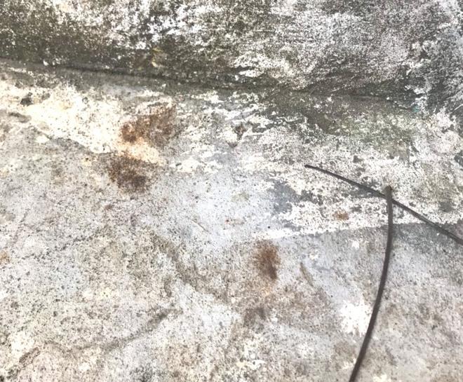 Vụ người chồng mất tích bí ẩn và lá thư hỏi tìm thấy xác chưa?: Cận cảnh căn nhà nhiều dấu vết lạ thường - Ảnh 7.