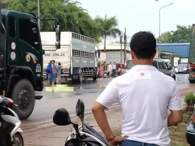 Hai vợ chồng từ Bình Thuận sang Đồng Nai làm thuê bị xe tải tông chết thương tâm - Ảnh 1.