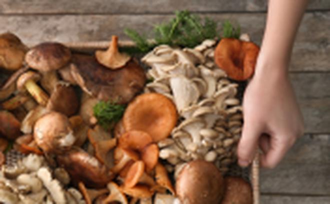 Ăn nhiều nấm giảm 45% nguy cơ ung thư