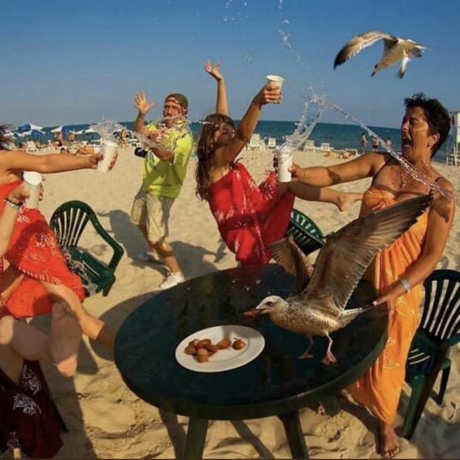 Loạt ảnh hài hước tại nhiều bãi biển khác nhau trên thế giới khiến bạn cười ra nước mắt (P2) - Ảnh 9.