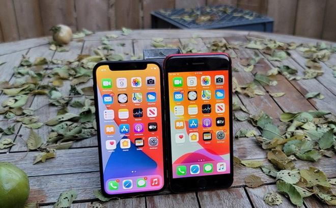 Không phải vì 'rẻ', không phải vì cỡ nhỏ, iPhone 12 Mini thất bại là vì 'sai lầm trong tính toán' của Tim Cook