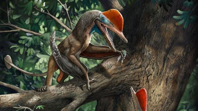 Liệu có thật sự tồn tại loài khủng long cổ đại có bàn tay giống con người? - ảnh 1